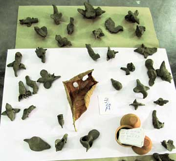 Clay-birds-made-by-children