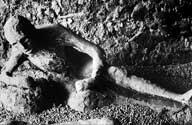 pompeii-victim