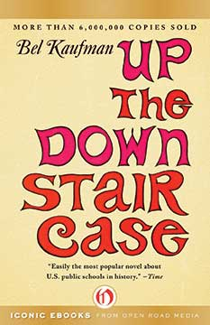 up-the-down-staircase