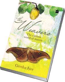 the-weavers