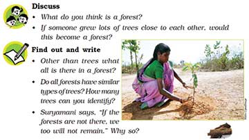 From NCERT textbook, Class V, EVS, pg. 183